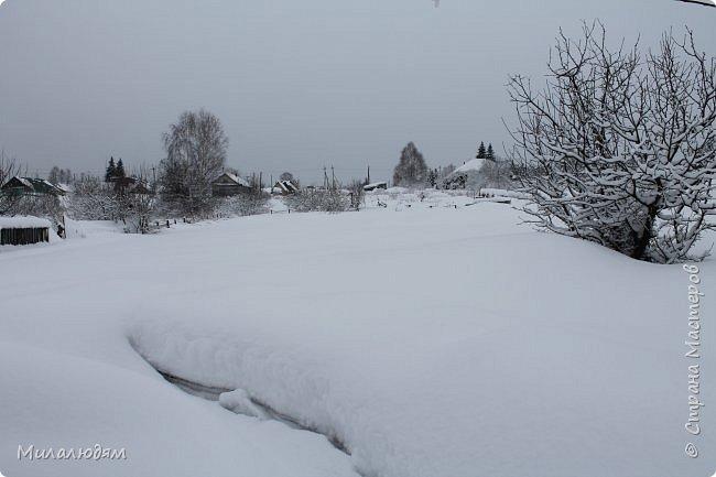 У нас закончились морозы и сразу начался буран и снегопад. фото 9