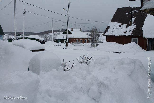 У нас закончились морозы и сразу начался буран и снегопад. фото 11