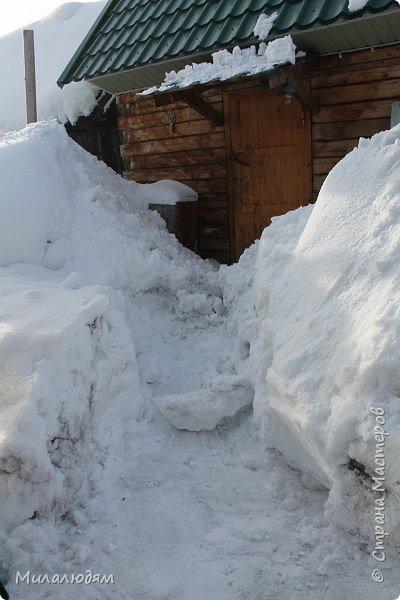 У нас закончились морозы и сразу начался буран и снегопад. фото 13