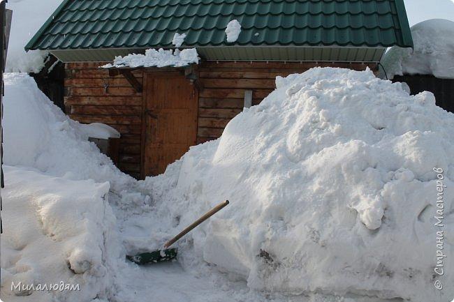 У нас закончились морозы и сразу начался буран и снегопад. фото 15