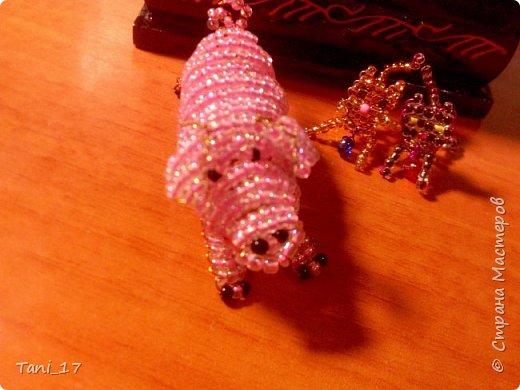 Свинка и котята. фото 1