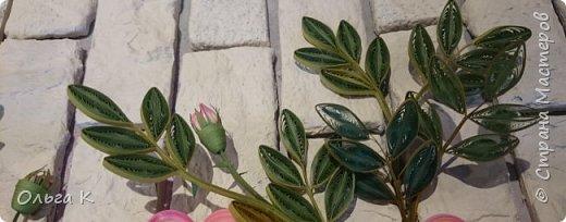 Привет всем! ДРУЗЬЯ, хочу Вам показать несколько своих совсем-совсем новых работ - орхидеи и розы; а так же  работы моих учеников - взрослых, которые приходят ко мне в студию. У нас такая творческая атмосфера царит, столько идей, творчества, настроения! Приходите и Вы, двери всегда открыты, будем рады!  фото 3