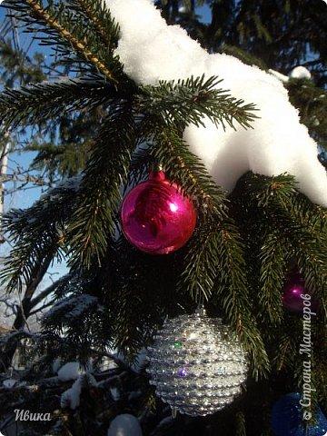 """Зима у нас очень """"странная"""" в этом году. Снежных, морозных, по настоящему зимних дней, практически, не было. Но... в Новый год у нас был и снег пушистый и мороз трескучий! Да такой, что фото всей этой красоты мне """"обошлось"""" в замерзшие почти до лёгкого отмораживания рук (в варежках-перчатках нуууу очень неудобно было). -22-24 мороза, %70-75 влажности - и вот такая красота на деревьях и кустах! Часть фото сделано  на фотоаппарат, часть - на телефон. Фотоаппарат отказался работать в таких условиях, телефон ему """"поддакивал"""".  Оно и понятно, в тепле-в добре оно получше за зимней красотой наблюдать. Предлагаю и вам посмотреть, то что успела сфотографировать.  Это - грецкий орех. Приодели его в такой вот наряд. Лёгкая наледь и иней такой бархатистый на вид. И всё это на фоне голубого неба. фото 20"""