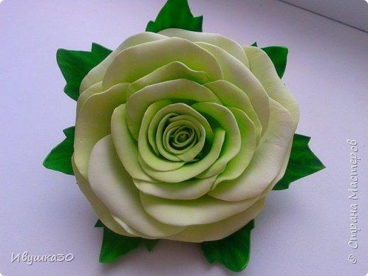 Ну вот и я решила, наконец-то, попробовать поработать с фоамираном.  Очень понравилось! В отличие от атласной ленты цветы из фома получаются более реалистичней. фото 8