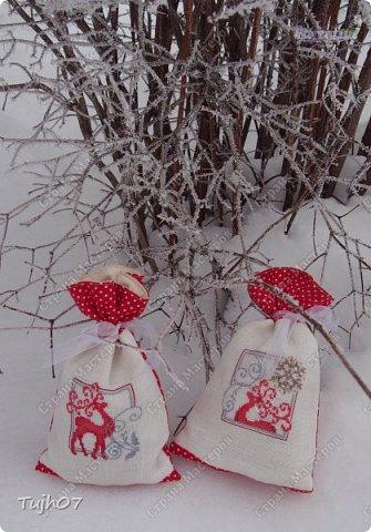 Шубка, шапка, рукавички. На носу сидят синички. Борода и красный нос - Это Дедушка Мороз! /Детские стихи о Дедушке Морозе/ фото 7
