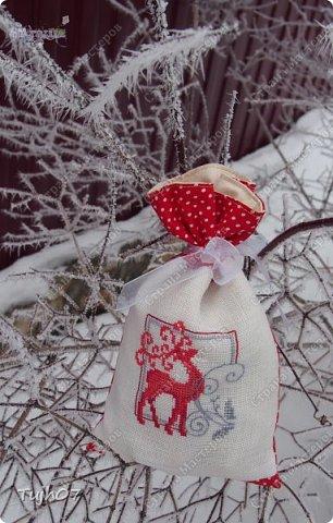 Шубка, шапка, рукавички. На носу сидят синички. Борода и красный нос - Это Дедушка Мороз! /Детские стихи о Дедушке Морозе/ фото 9