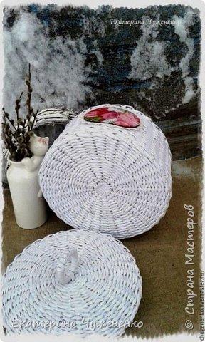 Снег на розах фото 2