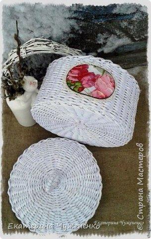 Снег на розах фото 4