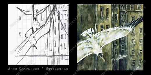 Белые крылья. Серия иллюстраций. фото 10