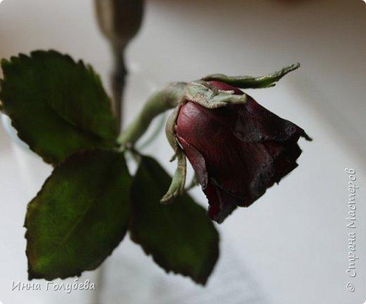 Экспериментирую)))Давно мне не дает покоя увядшие розы,так хочется научиться их лепить.Вот учусь)))Еще работать и работать над ней,но первый шаг в этом направлении сделан! фото 1