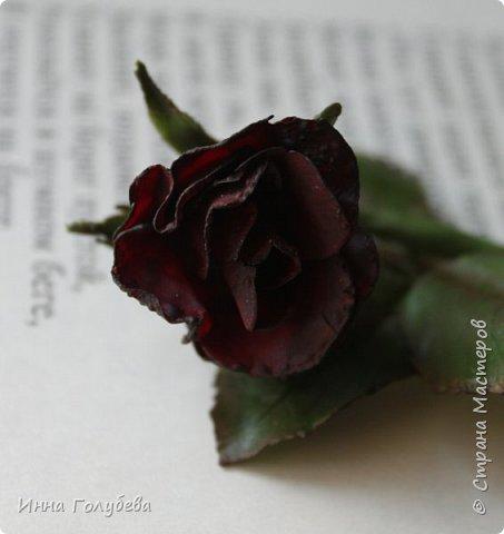 Экспериментирую)))Давно мне не дает покоя увядшие розы,так хочется научиться их лепить.Вот учусь)))Еще работать и работать над ней,но первый шаг в этом направлении сделан! фото 9
