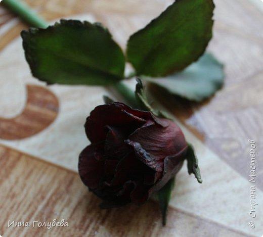 Экспериментирую)))Давно мне не дает покоя увядшие розы,так хочется научиться их лепить.Вот учусь)))Еще работать и работать над ней,но первый шаг в этом направлении сделан! фото 8