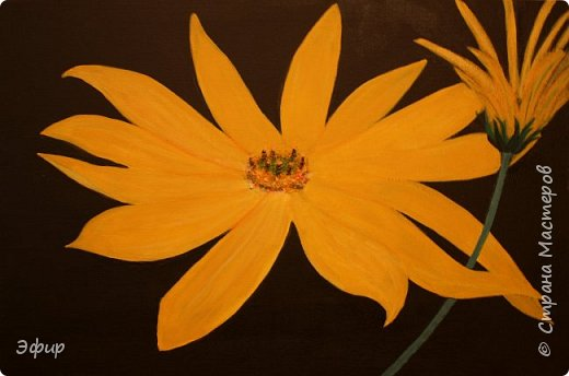 Цветок топинамбура. Работа выполнена акриловыми красками с ночного фото.