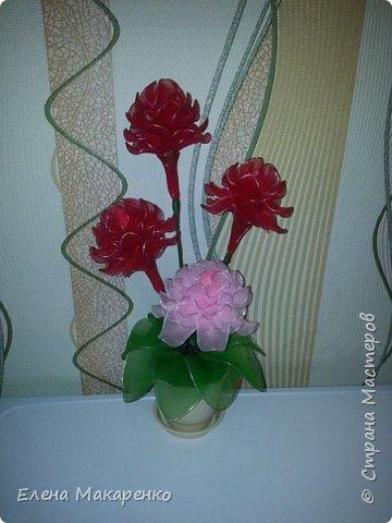 Цветы из капрона фото 2