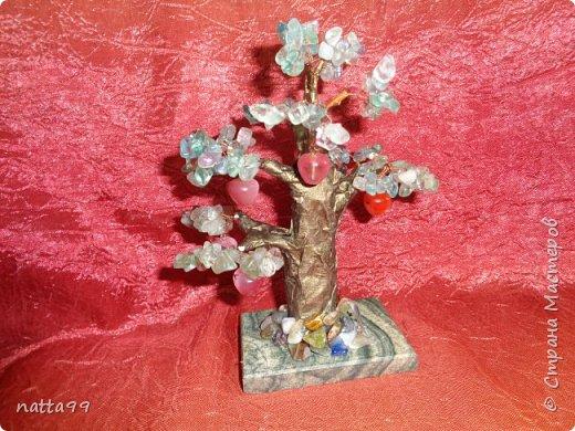яблоньки фото 2