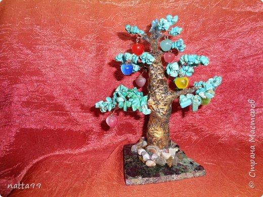 яблоньки фото 3