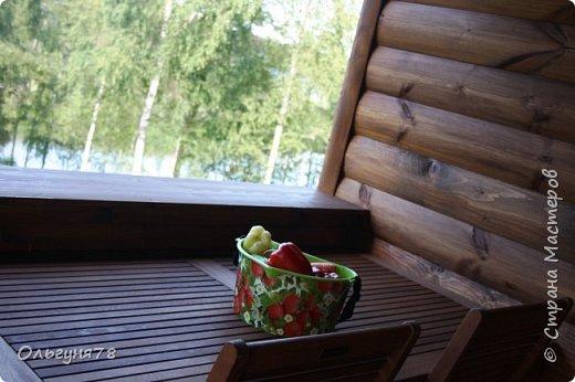 Привет всем:) Вот, захотелось прохладным зимним вечером пригласить вас всех, посетители моей странички, в лето, помечтать, ощутить его уже скорое приближение, ведь уже пахнет весной, ну, а там не за горами и долгожданное лето:) Ну, вперёд! А гулять мы с вами пойдём по очень красивым и загадочным местам Ленинградской области. Прошлым летом нашей семье посчастливилось отдыхать в этих необычайно красивых местах. фото 27