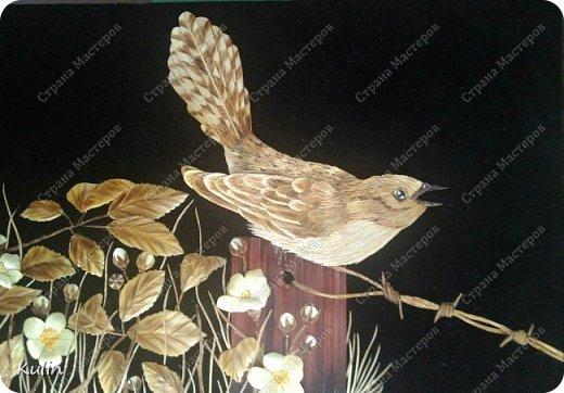 Кукушка — птица, «которая сама произносит свое имя» (греч. коккукс, куккос, лат. кукулюс, cucullus). У многих народов она считалась птицей, олицетворяющей душу, предсказательницей будущего или вестницей весны. Скипетр богини Геры был украшен скульптурой кукушки, потому что Зевс перед вступлением с ней в брак превратился в эту птицу фото 1