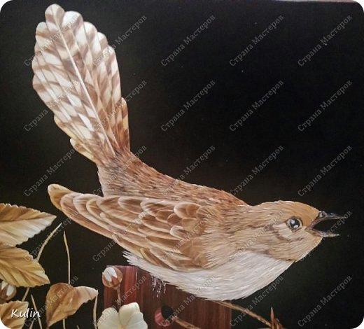 Кукушка — птица, «которая сама произносит свое имя» (греч. коккукс, куккос, лат. кукулюс, cucullus). У многих народов она считалась птицей, олицетворяющей душу, предсказательницей будущего или вестницей весны. Скипетр богини Геры был украшен скульптурой кукушки, потому что Зевс перед вступлением с ней в брак превратился в эту птицу фото 2