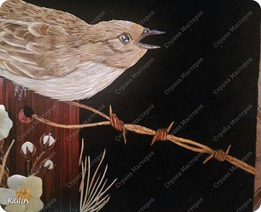 Кукушка — птица, «которая сама произносит свое имя» (греч. коккукс, куккос, лат. кукулюс, cucullus). У многих народов она считалась птицей, олицетворяющей душу, предсказательницей будущего или вестницей весны. Скипетр богини Геры был украшен скульптурой кукушки, потому что Зевс перед вступлением с ней в брак превратился в эту птицу фото 4