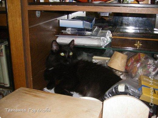 """Этот  котяш сделан по принципу предыдущего слоника, из массы папье-маше на основе футляра из-под """"киндер-сюрприза."""" фото 5"""