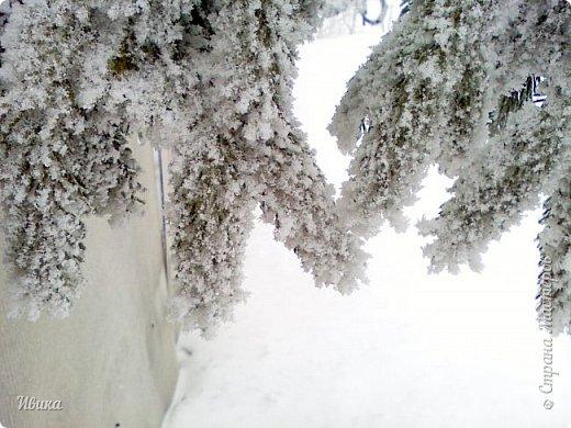 """Город в котором я живу называется красиво так - СнЕжное! И он полностью оправдывает своё название. Как я писала в одном из комментариев, если в соседних городах и сёлах снегом припорошило землю, то у нас насыпало по щиколотку. У соседей по щиколотку - у нас по коленку... А бывает и так, что у нас снега, как говорил Матроскин, """"завались"""", в соседних городах ни снежинки! И когда к нам едут в гости, просим учитывать, что у нас полным-полно снега и мороз. Все улыбаются и хихикают (те, кто едет к нам впервые). Мол """"Какой такой снег?!"""" И оооочччееень удивляются, когда видят сугробы по самую крышу! А ведь в каких-то десяти км от города снега нет и в помине! Так, слегка, кое-где и еле-еле заметно.  Фото прошлой зимы. Январь 30, 31 и начало февраля.  фото 3"""