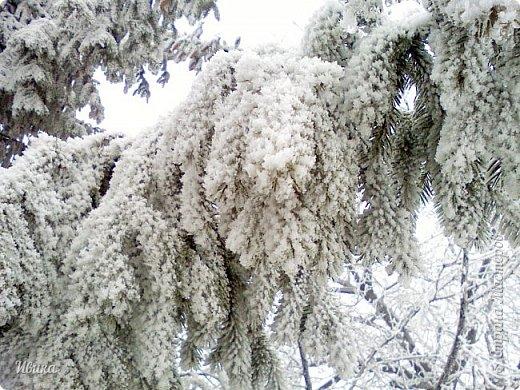 """Город в котором я живу называется красиво так - СнЕжное! И он полностью оправдывает своё название. Как я писала в одном из комментариев, если в соседних городах и сёлах снегом припорошило землю, то у нас насыпало по щиколотку. У соседей по щиколотку - у нас по коленку... А бывает и так, что у нас снега, как говорил Матроскин, """"завались"""", в соседних городах ни снежинки! И когда к нам едут в гости, просим учитывать, что у нас полным-полно снега и мороз. Все улыбаются и хихикают (те, кто едет к нам впервые). Мол """"Какой такой снег?!"""" И оооочччееень удивляются, когда видят сугробы по самую крышу! А ведь в каких-то десяти км от города снега нет и в помине! Так, слегка, кое-где и еле-еле заметно.  Фото прошлой зимы. Январь 30, 31 и начало февраля.  фото 4"""