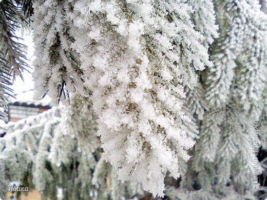 """Город в котором я живу называется красиво так - СнЕжное! И он полностью оправдывает своё название. Как я писала в одном из комментариев, если в соседних городах и сёлах снегом припорошило землю, то у нас насыпало по щиколотку. У соседей по щиколотку - у нас по коленку... А бывает и так, что у нас снега, как говорил Матроскин, """"завались"""", в соседних городах ни снежинки! И когда к нам едут в гости, просим учитывать, что у нас полным-полно снега и мороз. Все улыбаются и хихикают (те, кто едет к нам впервые). Мол """"Какой такой снег?!"""" И оооочччееень удивляются, когда видят сугробы по самую крышу! А ведь в каких-то десяти км от города снега нет и в помине! Так, слегка, кое-где и еле-еле заметно.  Фото прошлой зимы. Январь 30, 31 и начало февраля.  фото 6"""
