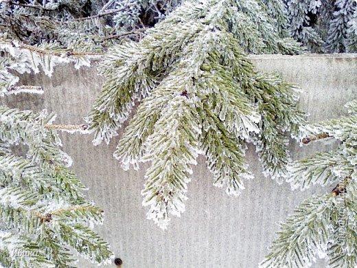 """Город в котором я живу называется красиво так - СнЕжное! И он полностью оправдывает своё название. Как я писала в одном из комментариев, если в соседних городах и сёлах снегом припорошило землю, то у нас насыпало по щиколотку. У соседей по щиколотку - у нас по коленку... А бывает и так, что у нас снега, как говорил Матроскин, """"завались"""", в соседних городах ни снежинки! И когда к нам едут в гости, просим учитывать, что у нас полным-полно снега и мороз. Все улыбаются и хихикают (те, кто едет к нам впервые). Мол """"Какой такой снег?!"""" И оооочччееень удивляются, когда видят сугробы по самую крышу! А ведь в каких-то десяти км от города снега нет и в помине! Так, слегка, кое-где и еле-еле заметно.  Фото прошлой зимы. Январь 30, 31 и начало февраля.  фото 7"""