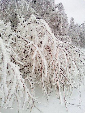 """Город в котором я живу называется красиво так - СнЕжное! И он полностью оправдывает своё название. Как я писала в одном из комментариев, если в соседних городах и сёлах снегом припорошило землю, то у нас насыпало по щиколотку. У соседей по щиколотку - у нас по коленку... А бывает и так, что у нас снега, как говорил Матроскин, """"завались"""", в соседних городах ни снежинки! И когда к нам едут в гости, просим учитывать, что у нас полным-полно снега и мороз. Все улыбаются и хихикают (те, кто едет к нам впервые). Мол """"Какой такой снег?!"""" И оооочччееень удивляются, когда видят сугробы по самую крышу! А ведь в каких-то десяти км от города снега нет и в помине! Так, слегка, кое-где и еле-еле заметно.  Фото прошлой зимы. Январь 30, 31 и начало февраля.  фото 11"""