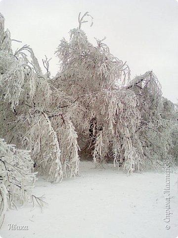 """Город в котором я живу называется красиво так - СнЕжное! И он полностью оправдывает своё название. Как я писала в одном из комментариев, если в соседних городах и сёлах снегом припорошило землю, то у нас насыпало по щиколотку. У соседей по щиколотку - у нас по коленку... А бывает и так, что у нас снега, как говорил Матроскин, """"завались"""", в соседних городах ни снежинки! И когда к нам едут в гости, просим учитывать, что у нас полным-полно снега и мороз. Все улыбаются и хихикают (те, кто едет к нам впервые). Мол """"Какой такой снег?!"""" И оооочччееень удивляются, когда видят сугробы по самую крышу! А ведь в каких-то десяти км от города снега нет и в помине! Так, слегка, кое-где и еле-еле заметно.  Фото прошлой зимы. Январь 30, 31 и начало февраля.  фото 13"""