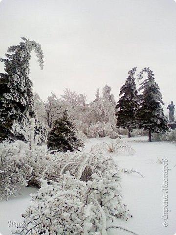 """Город в котором я живу называется красиво так - СнЕжное! И он полностью оправдывает своё название. Как я писала в одном из комментариев, если в соседних городах и сёлах снегом припорошило землю, то у нас насыпало по щиколотку. У соседей по щиколотку - у нас по коленку... А бывает и так, что у нас снега, как говорил Матроскин, """"завались"""", в соседних городах ни снежинки! И когда к нам едут в гости, просим учитывать, что у нас полным-полно снега и мороз. Все улыбаются и хихикают (те, кто едет к нам впервые). Мол """"Какой такой снег?!"""" И оооочччееень удивляются, когда видят сугробы по самую крышу! А ведь в каких-то десяти км от города снега нет и в помине! Так, слегка, кое-где и еле-еле заметно.  Фото прошлой зимы. Январь 30, 31 и начало февраля.  фото 17"""