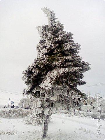 """Город в котором я живу называется красиво так - СнЕжное! И он полностью оправдывает своё название. Как я писала в одном из комментариев, если в соседних городах и сёлах снегом припорошило землю, то у нас насыпало по щиколотку. У соседей по щиколотку - у нас по коленку... А бывает и так, что у нас снега, как говорил Матроскин, """"завались"""", в соседних городах ни снежинки! И когда к нам едут в гости, просим учитывать, что у нас полным-полно снега и мороз. Все улыбаются и хихикают (те, кто едет к нам впервые). Мол """"Какой такой снег?!"""" И оооочччееень удивляются, когда видят сугробы по самую крышу! А ведь в каких-то десяти км от города снега нет и в помине! Так, слегка, кое-где и еле-еле заметно.  Фото прошлой зимы. Январь 30, 31 и начало февраля.  фото 18"""