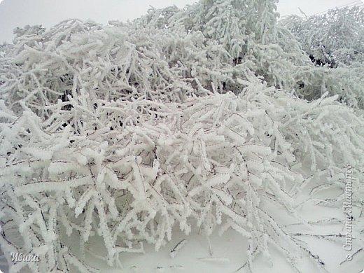"""Город в котором я живу называется красиво так - СнЕжное! И он полностью оправдывает своё название. Как я писала в одном из комментариев, если в соседних городах и сёлах снегом припорошило землю, то у нас насыпало по щиколотку. У соседей по щиколотку - у нас по коленку... А бывает и так, что у нас снега, как говорил Матроскин, """"завались"""", в соседних городах ни снежинки! И когда к нам едут в гости, просим учитывать, что у нас полным-полно снега и мороз. Все улыбаются и хихикают (те, кто едет к нам впервые). Мол """"Какой такой снег?!"""" И оооочччееень удивляются, когда видят сугробы по самую крышу! А ведь в каких-то десяти км от города снега нет и в помине! Так, слегка, кое-где и еле-еле заметно.  Фото прошлой зимы. Январь 30, 31 и начало февраля.  фото 23"""