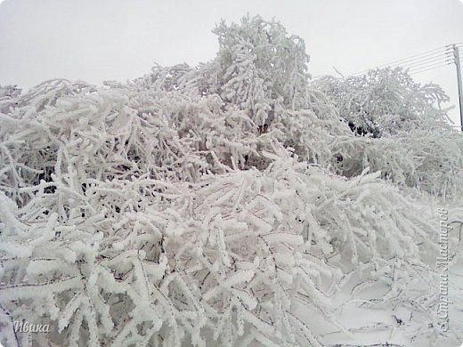 """Город в котором я живу называется красиво так - СнЕжное! И он полностью оправдывает своё название. Как я писала в одном из комментариев, если в соседних городах и сёлах снегом припорошило землю, то у нас насыпало по щиколотку. У соседей по щиколотку - у нас по коленку... А бывает и так, что у нас снега, как говорил Матроскин, """"завались"""", в соседних городах ни снежинки! И когда к нам едут в гости, просим учитывать, что у нас полным-полно снега и мороз. Все улыбаются и хихикают (те, кто едет к нам впервые). Мол """"Какой такой снег?!"""" И оооочччееень удивляются, когда видят сугробы по самую крышу! А ведь в каких-то десяти км от города снега нет и в помине! Так, слегка, кое-где и еле-еле заметно.  Фото прошлой зимы. Январь 30, 31 и начало февраля.  фото 24"""