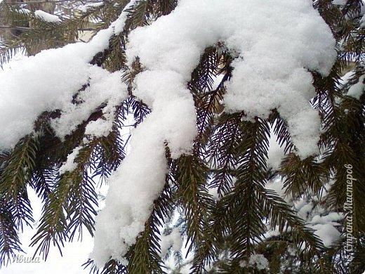 """Город в котором я живу называется красиво так - СнЕжное! И он полностью оправдывает своё название. Как я писала в одном из комментариев, если в соседних городах и сёлах снегом припорошило землю, то у нас насыпало по щиколотку. У соседей по щиколотку - у нас по коленку... А бывает и так, что у нас снега, как говорил Матроскин, """"завались"""", в соседних городах ни снежинки! И когда к нам едут в гости, просим учитывать, что у нас полным-полно снега и мороз. Все улыбаются и хихикают (те, кто едет к нам впервые). Мол """"Какой такой снег?!"""" И оооочччееень удивляются, когда видят сугробы по самую крышу! А ведь в каких-то десяти км от города снега нет и в помине! Так, слегка, кое-где и еле-еле заметно.  Фото прошлой зимы. Январь 30, 31 и начало февраля.  фото 29"""