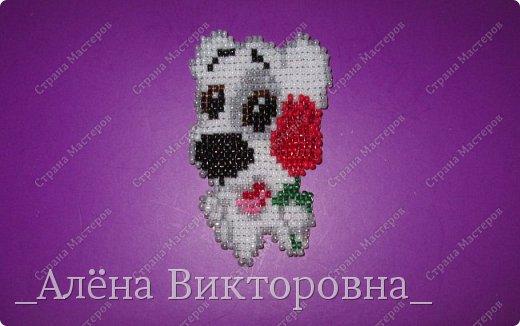 Милашка Спотти с розой в подарок