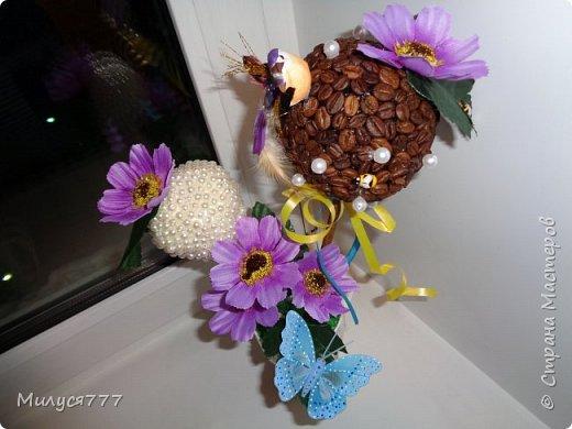 мои чашечки и топиарии. фото 2