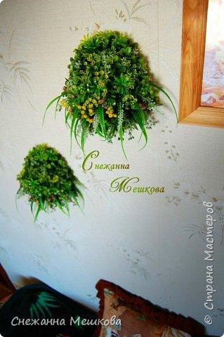 Декоративное панно ,без горшочка. Искусственная зелень многих типов.Украсит любую комнату , лёгок и удобен в уборке. фото 2
