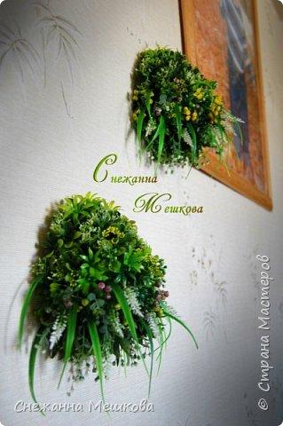 Декоративное панно ,без горшочка. Искусственная зелень многих типов.Украсит любую комнату , лёгок и удобен в уборке. фото 3