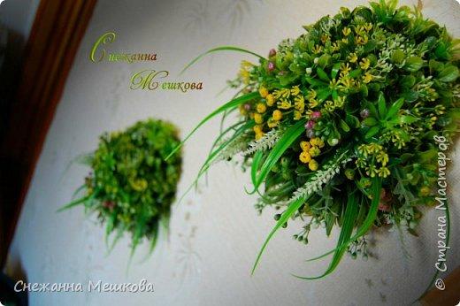 Декоративное панно ,без горшочка. Искусственная зелень многих типов.Украсит любую комнату , лёгок и удобен в уборке. фото 4