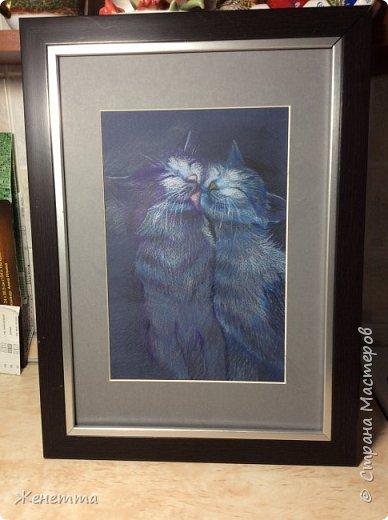 Пара кошек. Я рисую фото 2