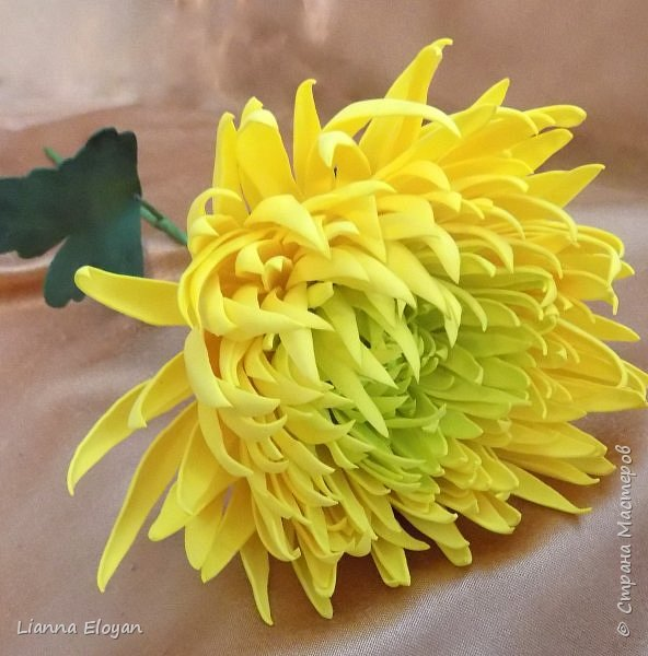 хризантемы из фоамирана фото 6