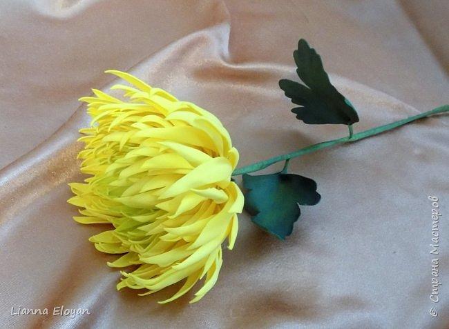 хризантемы из фоамирана фото 7