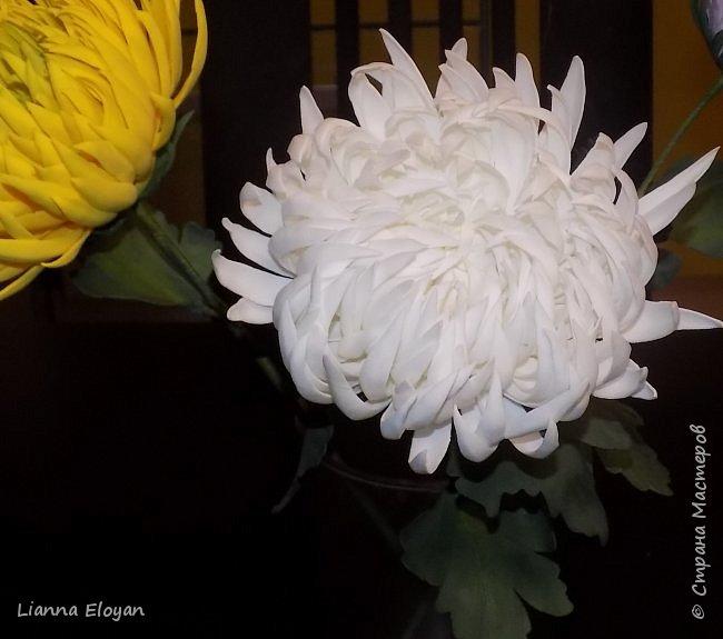 хризантемы из фоамирана фото 4