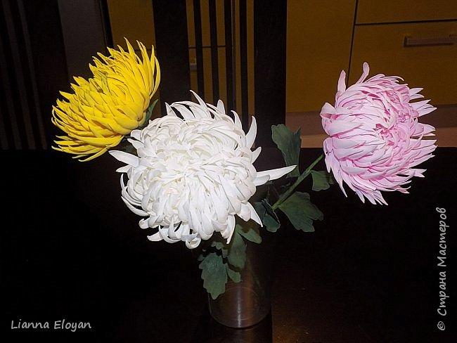 хризантемы из фоамирана фото 1