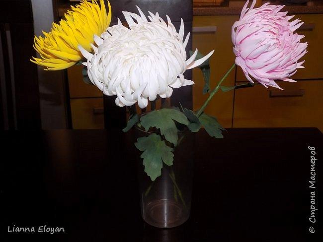 хризантемы из фоамирана фото 3
