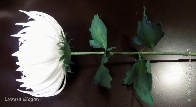 хризантемы из фоамирана фото 5