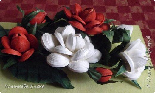 """Доброго времени суток всем жителям Страны Мастеров! Хочу показать вам  работу в любимой мною технике квиллинг """"Розы в вазе"""". Очень люблю её! Надеюсь, и вам она придётся по душе... фото 7"""