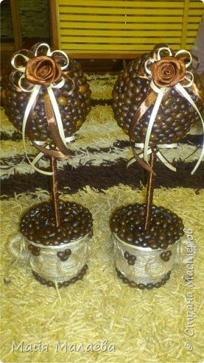 Топиарий из кофейных зёрен. Вот такие красавицы получились на заказ)))